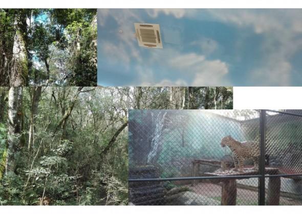 Fotomontagem realizada a partir de registros feitos durante a viagem de imersão pela fronteira (junho de 2017)